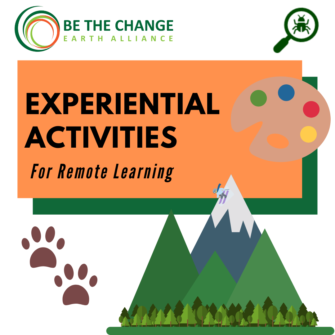 Experiential Activities Toolbox